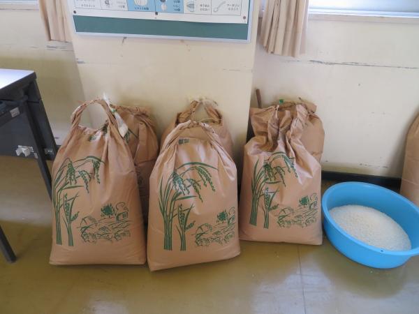 収穫した餅米