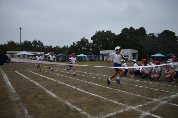スポーツフェスティバルが開催されました